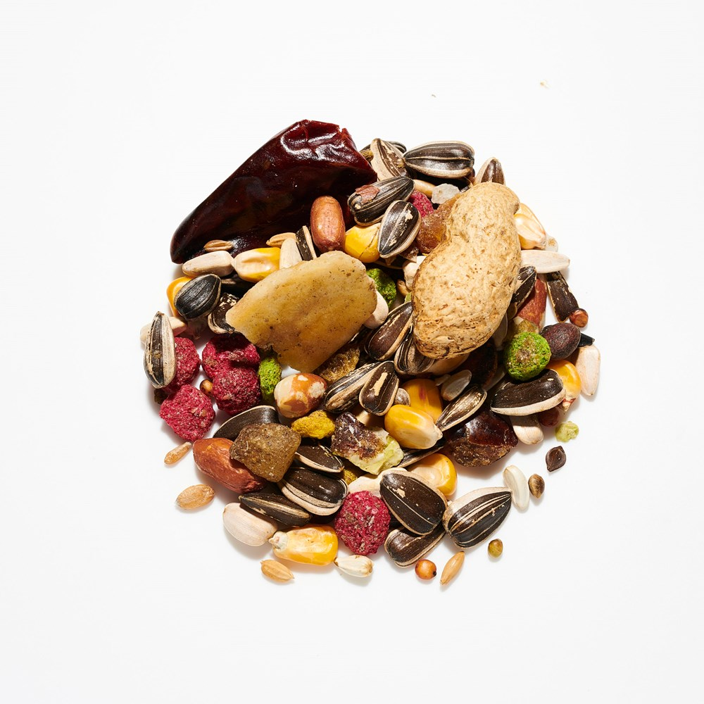 Willsbridge Fruity Parrot Mix 12.5kg