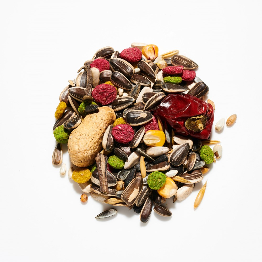 Willsbridge Parrot Mix Seed 12.5kg