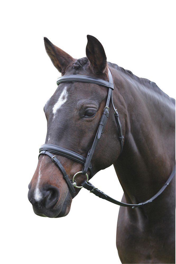 Weatherbeeta New Kincade Flash Bridle Black Pony