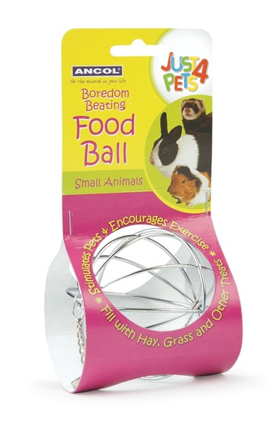 Small Animal Food Ball