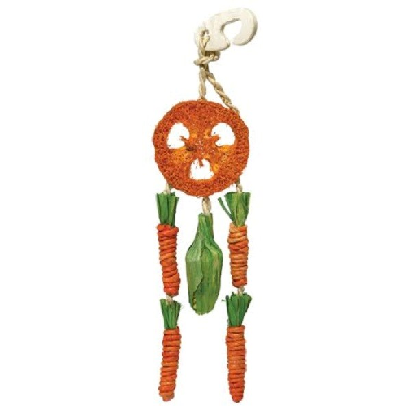 Carrot Dream Catcher