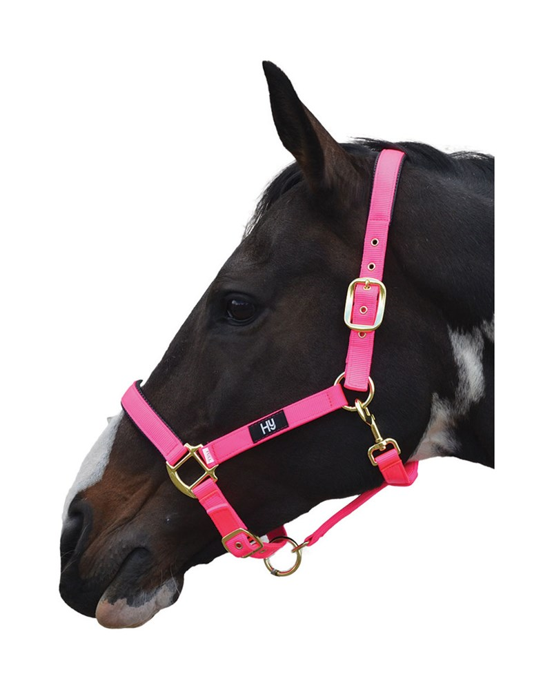 HY GRAND PRIX HEADCOLLAR COB HOT PINK