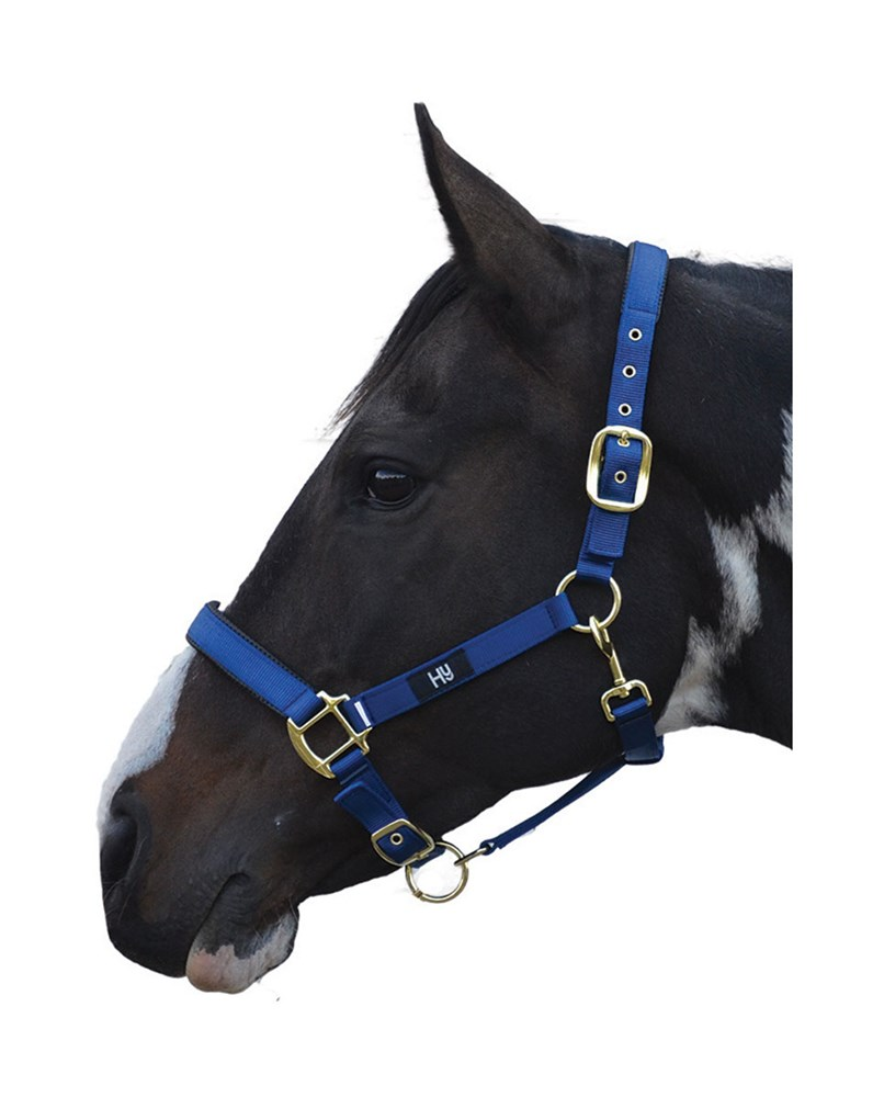HY GRAND PRIX HEADCOLLAR FULL NAVY