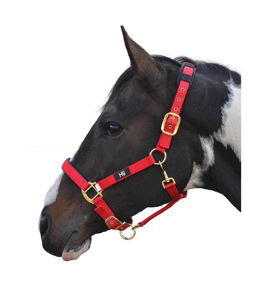HY DELUXE PADDED HEADCOLLAR COB RED