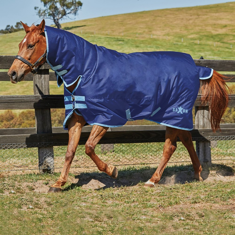 Horse Rug Saxon Combo Neck Medium IV Navy/Light Blue 4'6