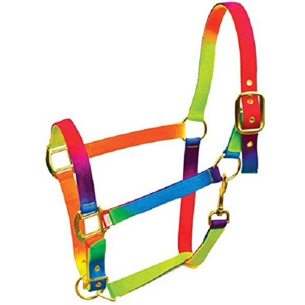 WBT ROMA RAINBOW HEADCOLLAR PONY