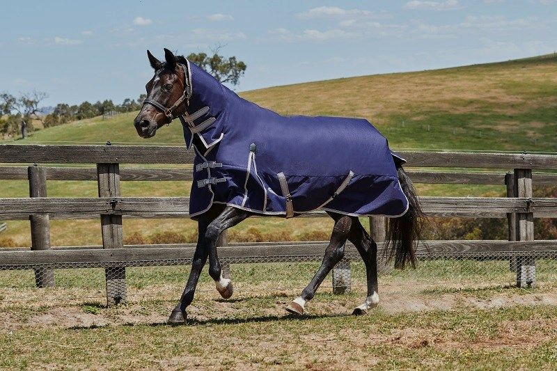 Weatherbeeta Horse Rug Comfitec Essential Combo Neck Medium Navy 6'0