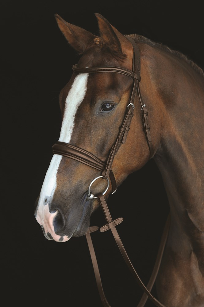 Collegiate Padded Cavesson Bridle Brown Full