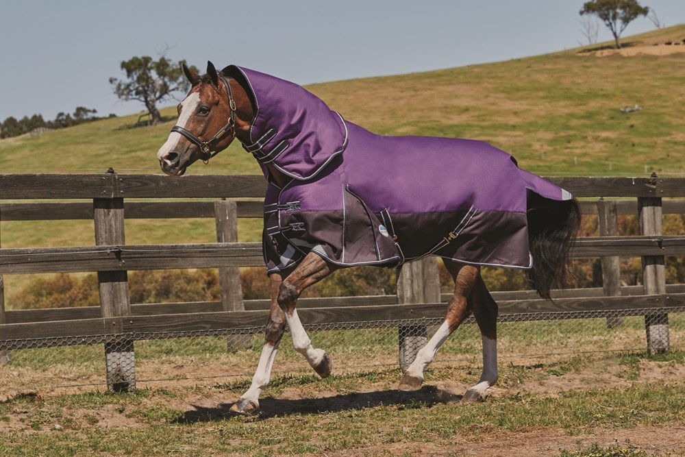 Weatherbeeta Horse Rug Comfitec Plus Heavy Purple 5'9