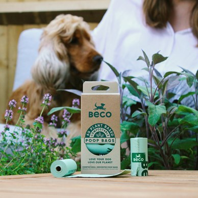 Toilet Training & Poo Bags