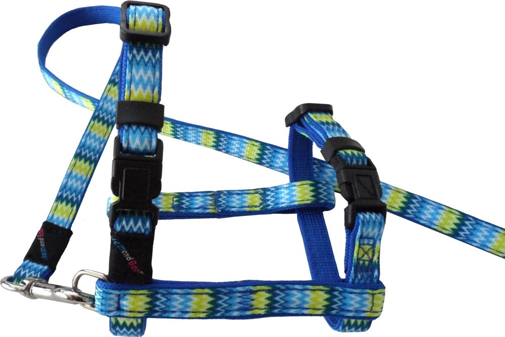 ZIG ZAG HARNESS AND LEAD SET MIXED