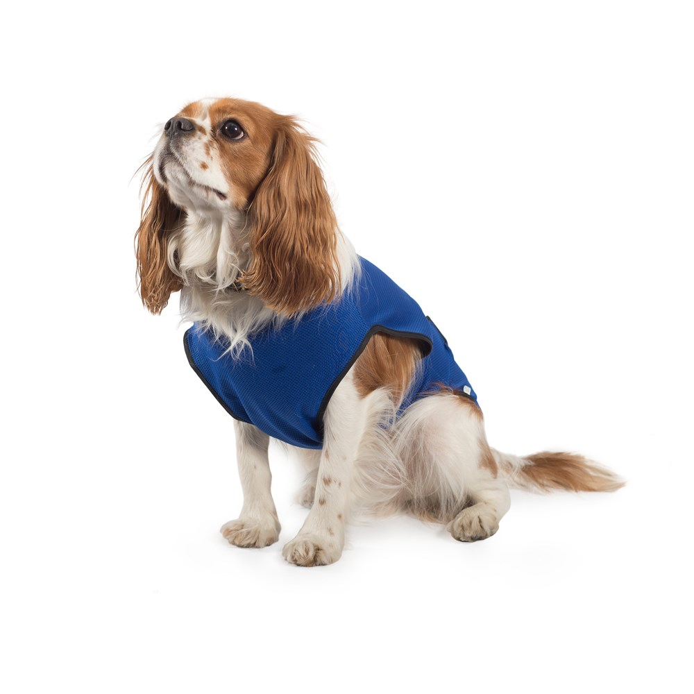 Cooling and Calming Dog Coats