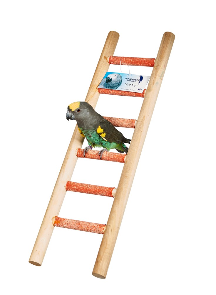 SIX STEP CEMENT LADDER