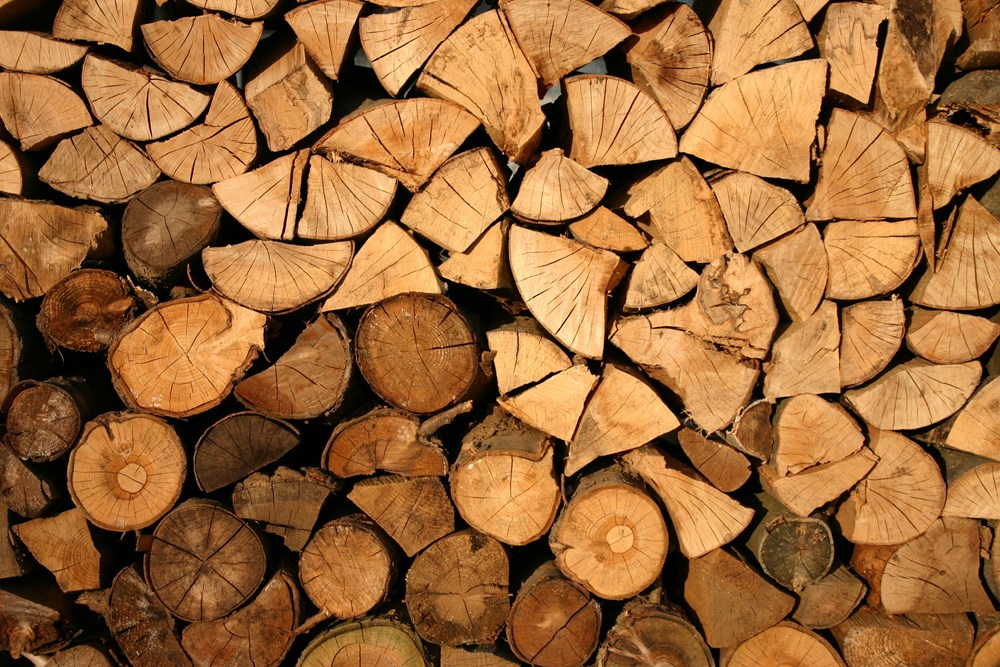 Kiln Dried Hardwood Logs -10kg