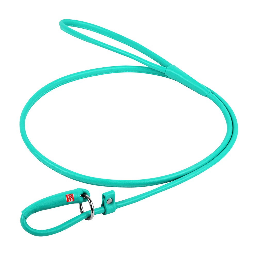 WAUDOG GLAM LEATHER SLIP LEAD 10MM MINT