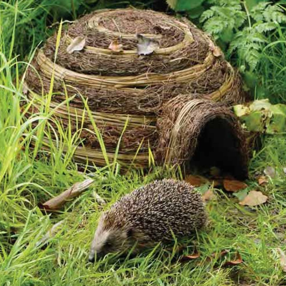 HEDGEHOG IGLOO HOME