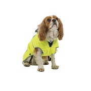 Dog High Visibility and Reflective Wear